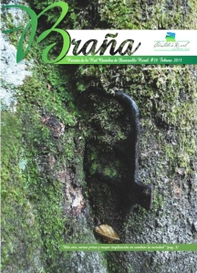 Revista Braña número 28