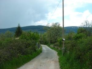 Camino rural en San Mamés (Madrid)