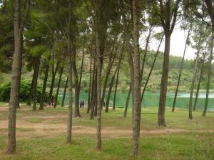 Lagunas de Ruidera Junio 2013 (10)