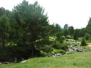 Curso del río Lozoya (Madrid)