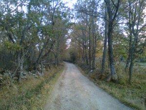 Camino de San Mamés, en la Sierra de Madrid