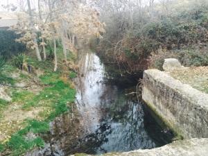 Cauce del río Ciguela, en Saelices, Cuenca